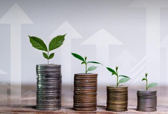 Bingung Mau Investasi Apa, Inilah Investasi yang Cocok Bagi Pemula